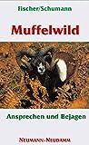 Muffelwild: Ansprechen und Bejagen