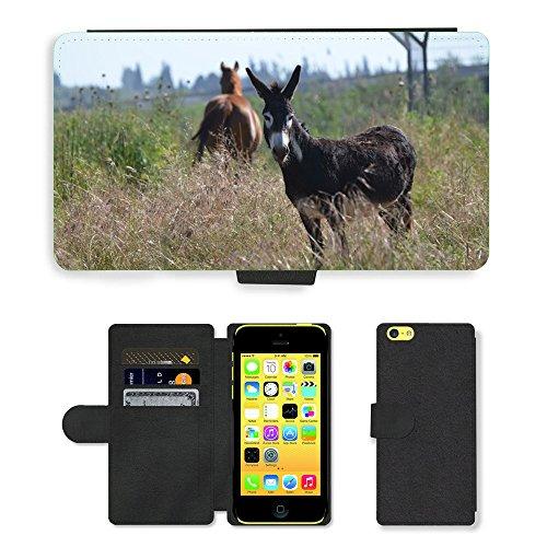 Just Mobile pour Hot Style Téléphone portable étui portefeuille en cuir PU avec fente pour carte//m00138552âne Nature Mammifère Animal Farm//Apple iPhone 5C