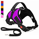 Musonic No Pull Dog Harness, Breathable Adjustable Comfort, Free Lead Included, for Small Medium Large Dog, Best for Training Walking (Large, Purple)