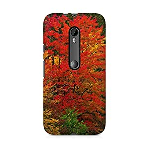 Printed back cover for Moto X Play by Motivatebox.Beautiful tree design, Polycarbonate Hard case with premium quality and matte finish