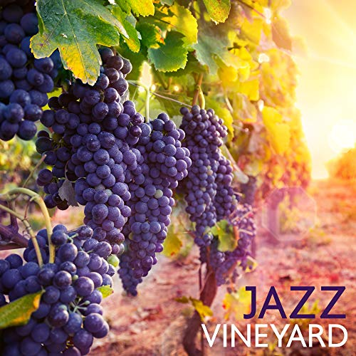 Jazz Vineyard: Music from the Winery, Wine Shops and Wine Bar for Drinking and Tasting White or Red Wine, for Exquisite Meals and Romantic Dinners