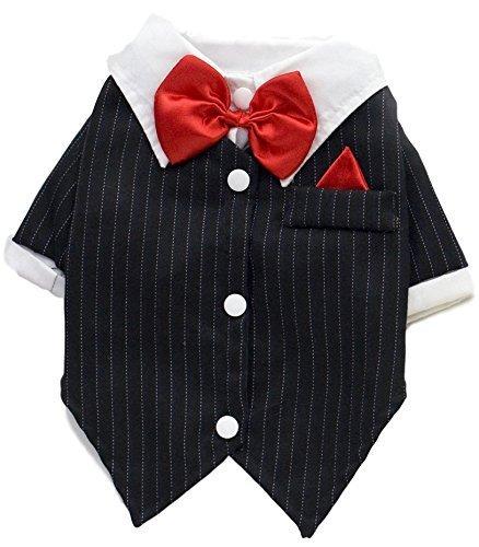 Haustier Klein & groß Hund Katze tuexdo Hochzeit Anzug Kostüm Kleid Kostüm Outfit Kleidung Kleidung S-9XL - 8X (8x Kleidung)