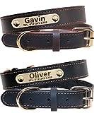 Taglory Personalisierter Hundehalsband aus Leder,Mit Namensschild graviert,Gold Metallschnalle benutzerdefinierte Halsbänder für kleine Hunde/33-39cm, Schwarz, Braun