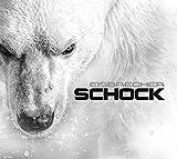 Songtexte von Eisbrecher - Schock