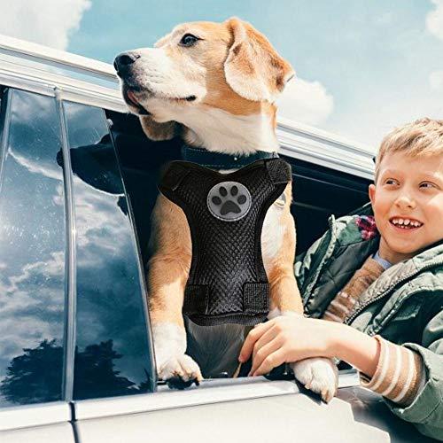 Succeedw Hundegeschirr Hundeweste Sicherheitsgurt für alle kleinen, mittleren und großen Hunde, Kätzchen und mittleren Katzen