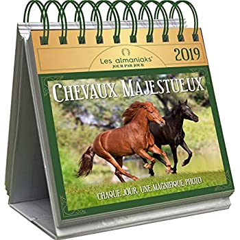 Le Grand Almaniak Chevaux majestueux 2019