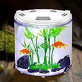 Perfecto Pecera para dos peces ideal para poner plantas para tus peces