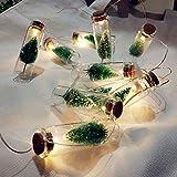 Weihnachtsbeleuchtung 1M Batterie Weihnachtsbaum Schnur Lichterketten Glasflaschen Girlande Weihnachtshochzeit Lichterkette Dekoration