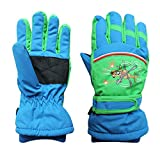 Arcweg gants d'hiver pour garçon et fille gants imperméables doublés de peluche de ski cyclisme Bleu et verde L (8-10 ans)