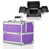 Hotrose - valigetta beauty case extra large, con ampio spazio per sistemare moltissimi trucchi e accessori, Butterfly Pattern, Purple, L