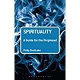 Spirituality: A Guide for the Perplexed (Guides for the Perplexed)