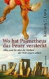 Wo hat Prometheus das Feuer vesteckt?: Alles, was Sie über die Mythen der Welt wissen sol (Ehrenwirth Sachbuch) - Kenneth C. Davis