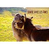 DANSE AVEC LES ÂNES (Calendrier mural 2017 DIN A4 horizontal): Les ânes d'Espanès de la région Midi-Pyrénées (Calendrier mensuel, 14 Pages ) (Calvendo Animaux)