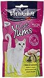Vitakraft Cat Yums  Leberwurst    40g