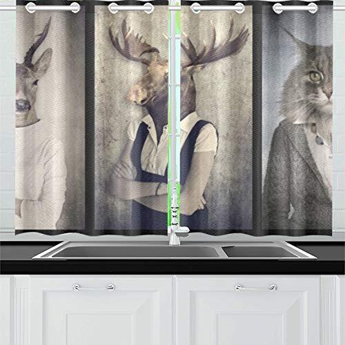 JOCHUAN Tiere Kleidung Konzept Grafik Vintage Style Küchenvorhänge Fenster Vorhangebenen Für Café, Bad, Wäscherei, Wohnzimmer Schlafzimmer 26 X 39 Zoll 2 Stück (Kleine Zebra Mädchen Kostüm)