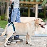 Hilfsgurt Haustier Zubehör, Pet Back Leg Deformity verletzt alten Hund Treppe l