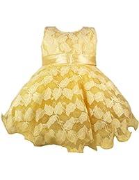 Jennygrace Baby Girl's Party Wear Frock Dress JGG-150