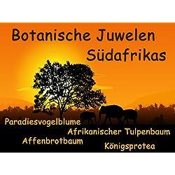 Gewächshaus Botanische Juwelen Südafrika