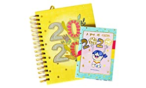 Alicia Souza - 2020 The Ultimate Planner Diary| Free Pocket Planner & Planner Box | Goals & to-Do Lists | Cute Illustrations | Height - 22cm; Width - 17cm