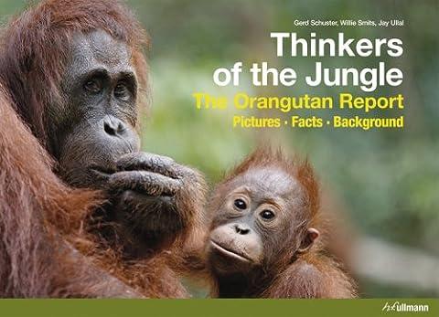Thinkers of the Jungle (Jungle Orangutan)