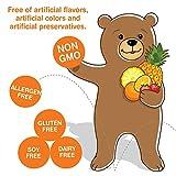 Yummi Bears Vegetarian Multi-Vitamin & Mineral Gummy Vitamin for Kids, 90 Gummy Bears