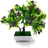 24x7eMall Artificial Bonsai Tree with Pot and Grass (25 x 24cm, Pot - 11cm x Breath 7cm, Green and Purple)