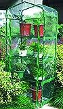 Green Blade 4 Tier Mini Greenhouse