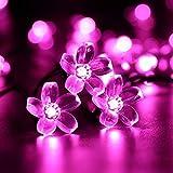 Catena Luminosa Stringa Luci Fiore Solare Esterna,KINGCOO Impermeabile 21ft 50LED Fiore di Pesca Sakura Luci di Stringa Solare Fata per Case Giardini Decorazioni Natalizie Feste (Rosa)
