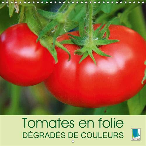 Tomates en folie - degrades de couleurs 2020: Les tomates - elles prennent toutes les formes: ovoide ou allongees, en forme de coeur ou toute rondes par CALVENDO