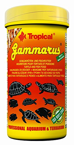 tropical-gammarus-dried-freshwater-shrimps-for-turtles-tortoises-and-large-ornamental-fish-tin-1000-