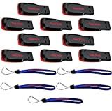 SanDisk Cruzer Blade 8GB (10 pack) USB 2.0 Flash Drive Jump Drive Thumb Drive SDCZ50-008G-10PK w/ (5) Everything But Stromboli (TM) Lanyard
