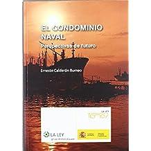 El condominio naval: Perspectivas de futuro (Temas La Ley)