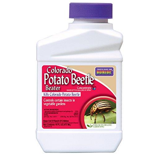 bonide-colo-potato-beetle-pt-model-687-pack-of-12