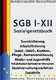 Das Sozialgesetzbuch - SGB I-XII 12'16: Grundsicherung, Arbeitsförderung, Sozialversicherung, Kranken-, Pflege- und Rentenversicherung, Kinder- und Jugendhilfe, ... Sozialhilfe (Rechtsbibliothek Gesetze 40)