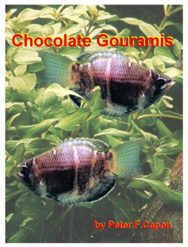 Chocolate Gourami (English Edition)
