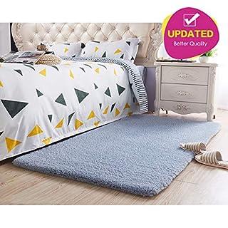 Area Rug Light Grey Modern Shaggy Carpet for Baby/Pet Room/Bedroom/Living Room  (3x4ft (120x 80cm))