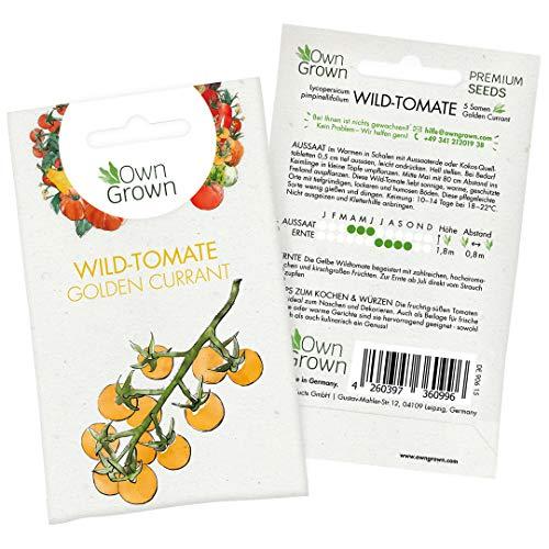 Tomaten Samen Golden Currant: Gelbe Wildtomaten Samen zum einfachen Anbau von Tomatenpflanzen für Balkon, Garten - 5 Golden Currant Tomatensamen für köstliche Kirschtomaten - Gemüse Samen von OwnGrown