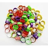 300 bandas para patas de aves de corral en 6colores, anillos para pájaros, pollos, patos