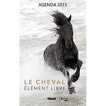 Agenda 2015: Le cheval, élément libre