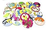 Adventskalender Button Set Eule Zahlen 1-24 Deko Anstecker 3,8 cm Weihnachten Christmas Wichtelgeschenk