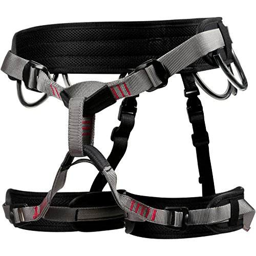 LACD Harness Start M Grey 2019 Gurt -