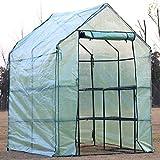 D4P Display4top Serra da Giardino 143 x 143 x 195 cm Serra con Tetto Arrotondato in PE per Piante Verde