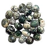 Prisha Dalme Gute Deko Steinen für vielfachen (2.2LBS)