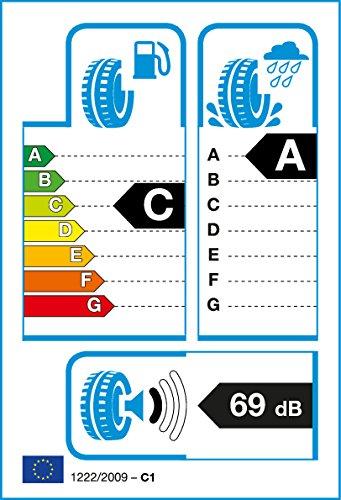 Roadstone-20555-R16-91-V-Eurovis-Sport-04
