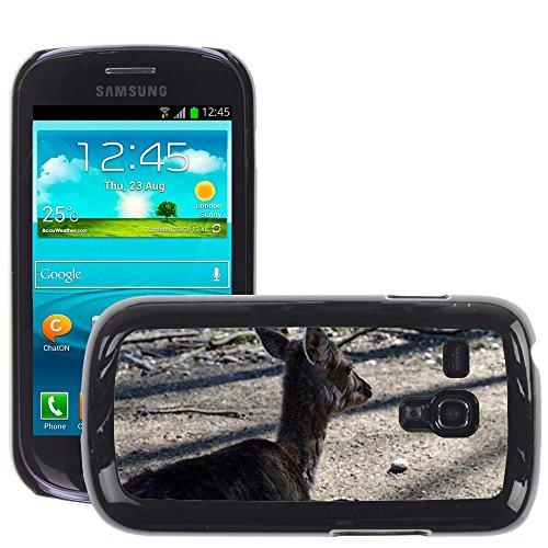 Grand Phone Cases Bild Hart Handy Schwarz Schutz Case Cover Schale Etui // M00140992 Roe Deer Wild Forest Wildlife Park // Samsung Galaxy S3 MINI i8190 - Handy Galaxy Case Deer S3 Samsung