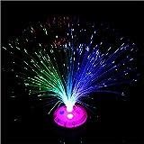 Romote Farbe ändern Fibre Optic Brunnen Nacht Leichte Beruhigung Lampe zufällige Farbe (Batterien Nicht Enthalten)