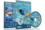 Schlaf DVD – Baby's Aquarium mit süßen Schlafliedern und Piano Musik – Schlaflieder für Schlafenszeit