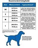 The Company of Animals CLIX CarSafe Harness Medium