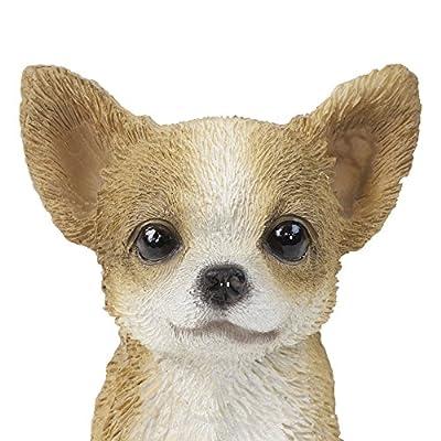 Deko Figur Kleiner Hund Brauner Chihuaha Welpe für Haus oder Garten -16cm Hoch von Gardens2You auf Du und dein Garten