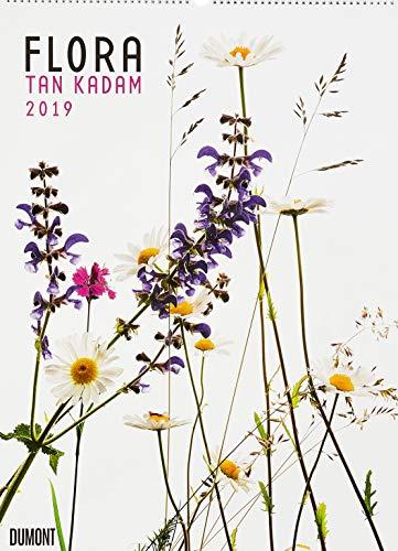 Flora 2019 – Blumen-Kalender von DUMONT– Foto-Kunst – Poster-Format 49,5 x 68,5 cm - Partnerlink